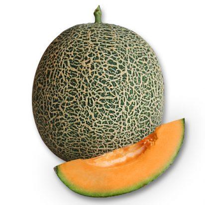 F1 Hybrid Melon