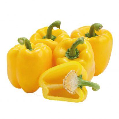 F1 Hybrid Sweet Pepper
